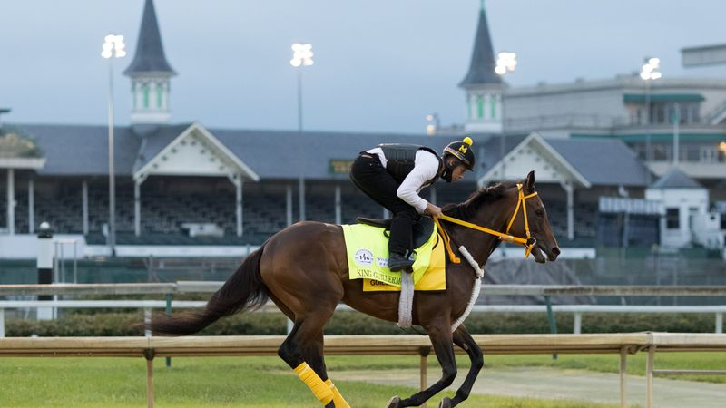 King Guillermo will not run in the Kentucky Derby.