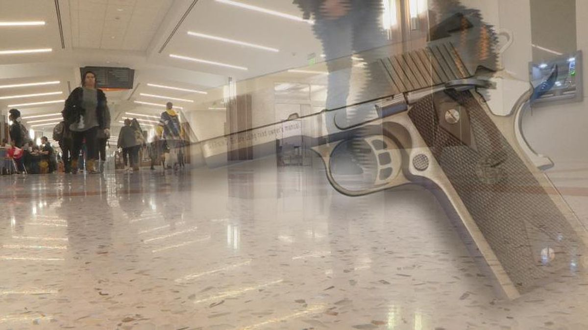 There is a newly introduced bill that, if passed, would allow students to have a concealed carry gun on public higher education institutions. Source / WVLT