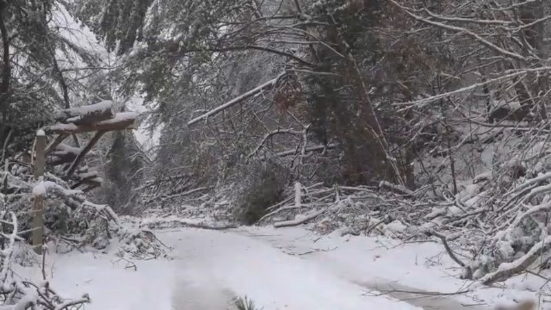 Officials say that only 28% of the county currently has power.