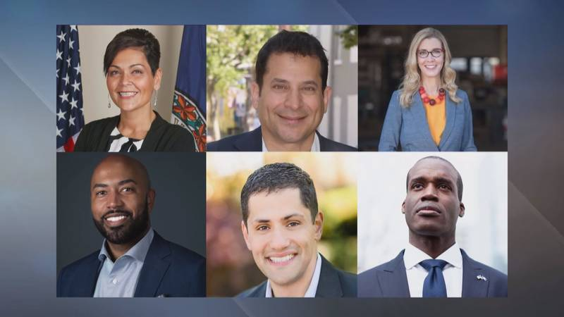 Six candidates are vying for the Democratic nomination to run for Virginia Lieutenant Governor...