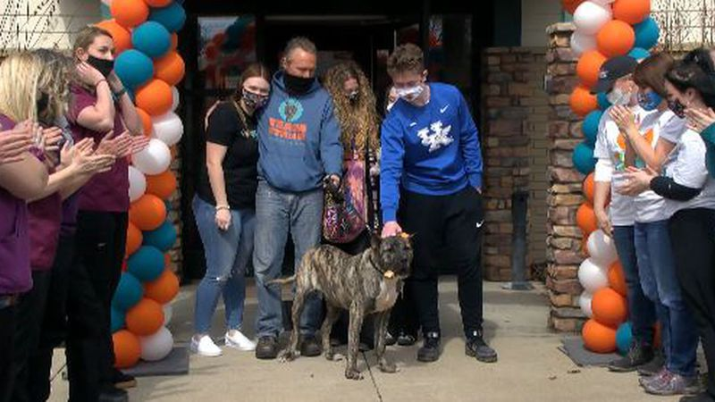 To great fanfare outside the Kentucky Humane Society, Ethan went home -- for good -- with the...