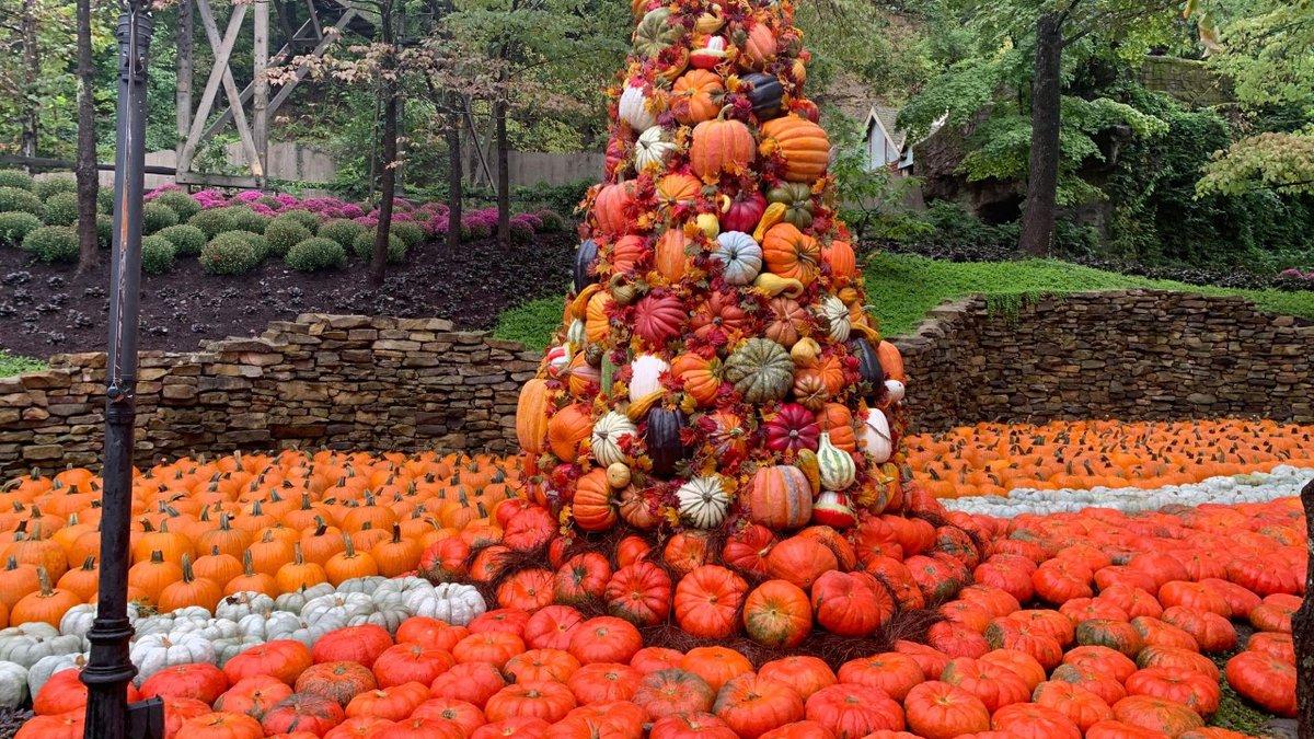 Dollyood Great Pumpkin Luminights