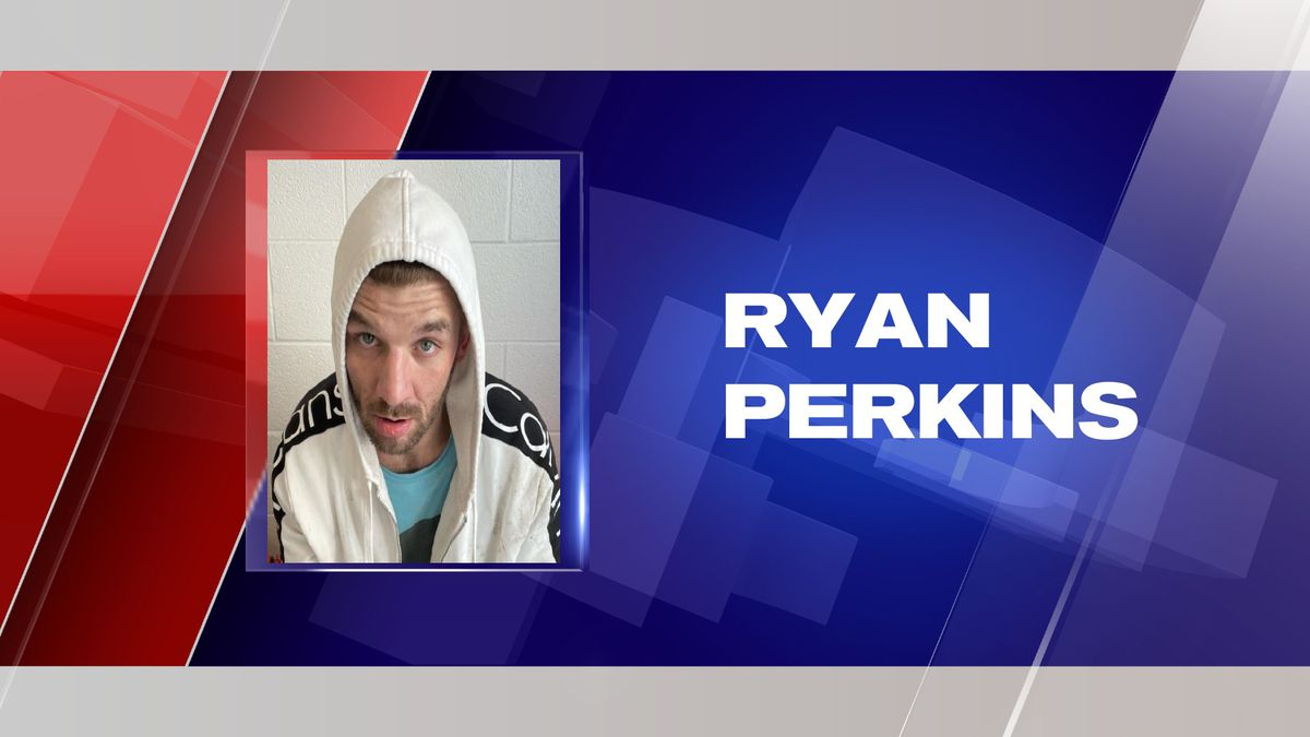 A man arrested in the Red Jacket area faces several charges, including drug offenses, the Mingo...