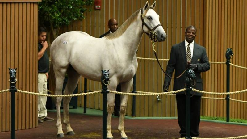 While there are still plenty of questions on what Keeneland will do for their Fall Meet, one...