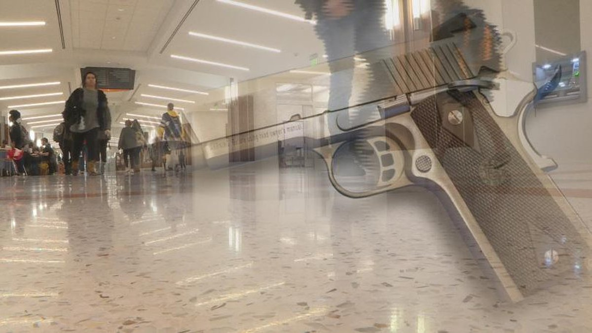 There is a newly introduced bill that, if passed, would allow students to have a concealed...