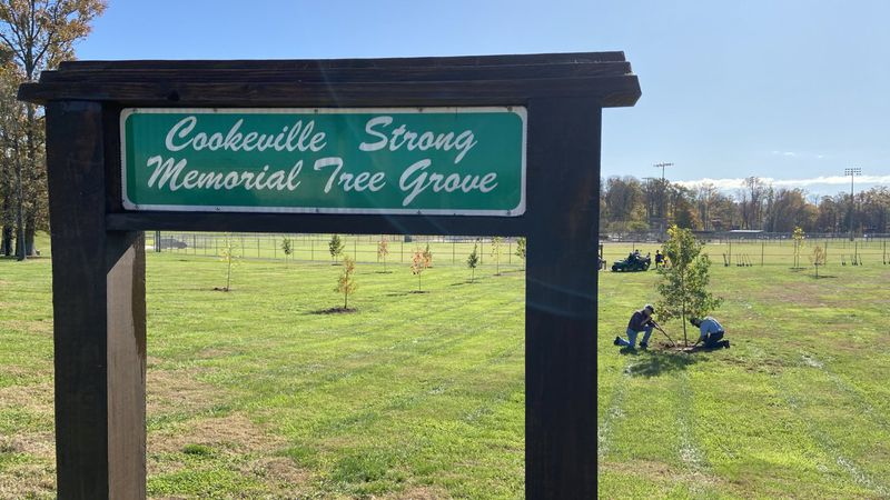 Cookeville plants 19 trees in memory of the lives lost to the March tornado.