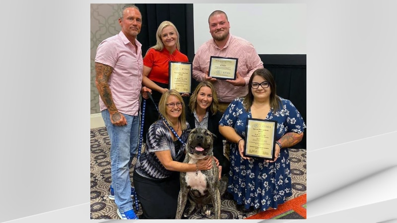 Ethan the dog and the veterinary team that cared for him received high honors as recipients of...