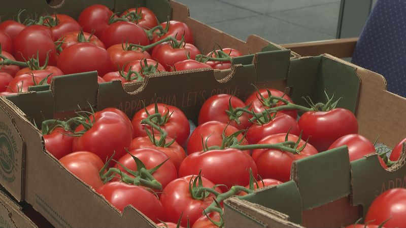 AppHarvest delivers tomatoes to multiple ARH locations across the state