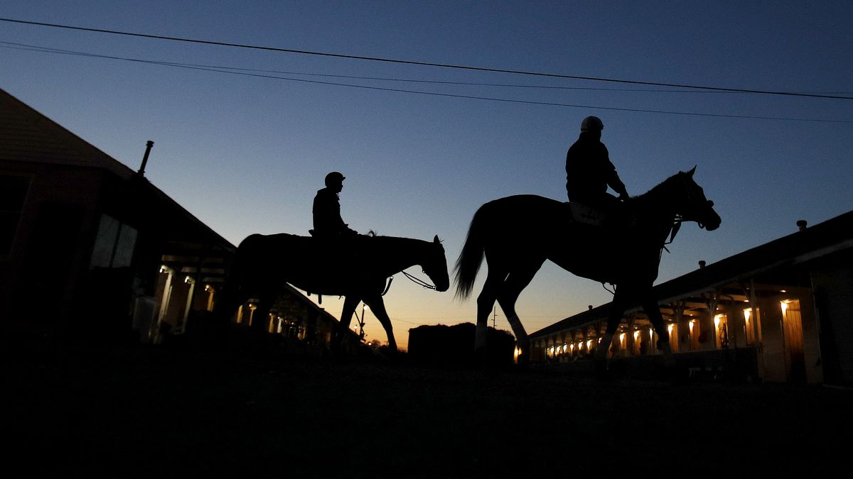 Horses make their way back to the barn after an early morning workout at Churchill Downs...