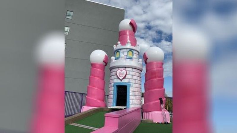 A 9-year-old who's battled a brain tumor since she was three now has her very own castle.  The...