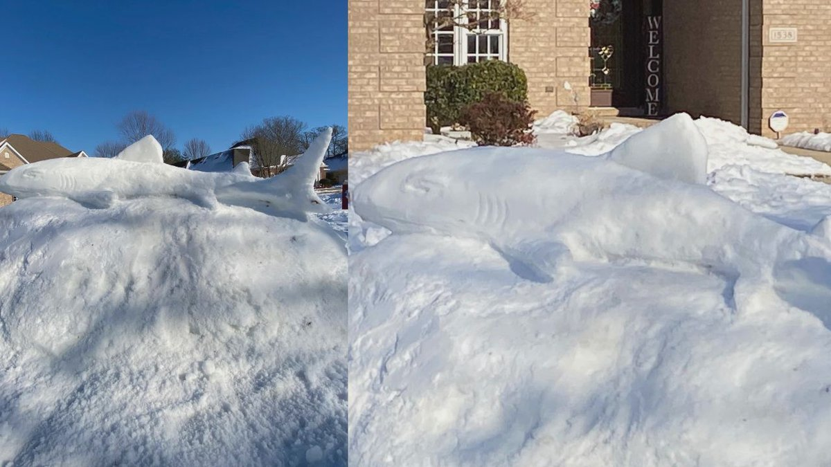 A Bowling Green man built a snow shark at his home in the Crossridge Subdivision in Bowling...