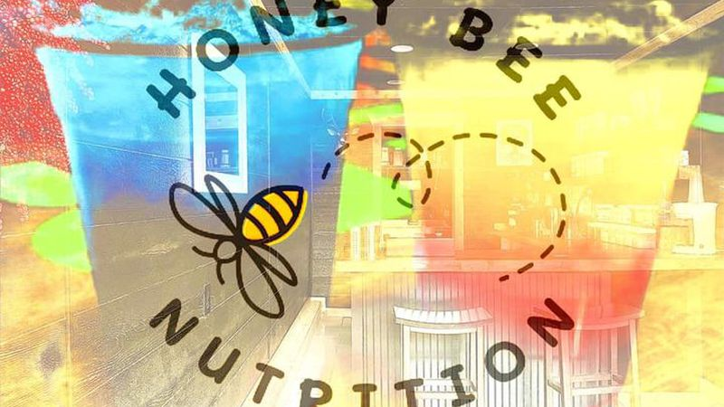 Honey Bee Nutrition hosts grand opening.