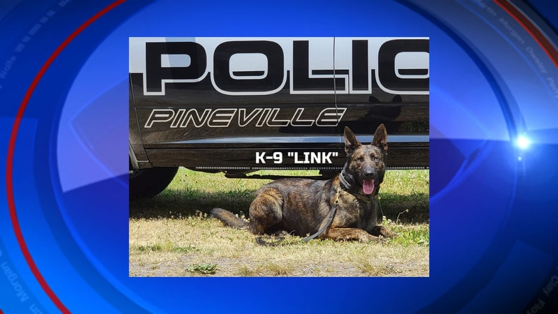 A funeral was help to honor the life and service K-9 Link did for Eastern Kentucky