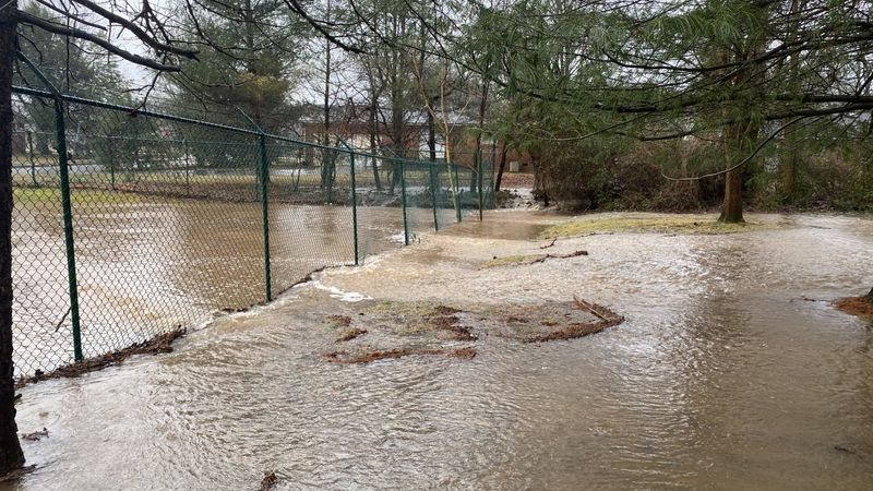 BG woman's backyard and basement flood.