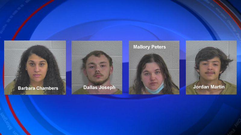 Several people were arrested Sunday morning just outside London on DUI and alcohol intoxication...