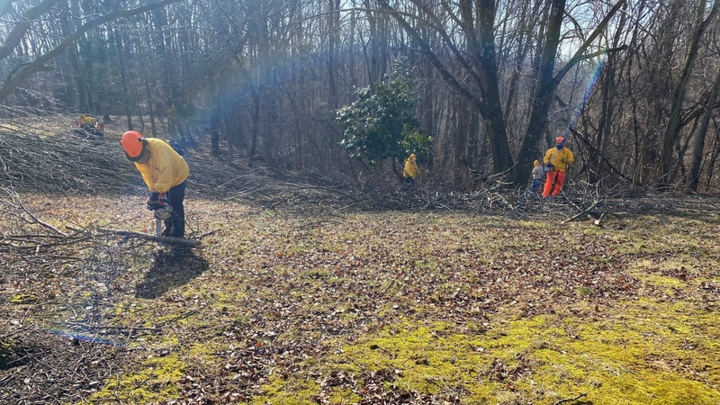 Crews with the Kentucky Baptist Relief are in Lincoln County cleaning up after the recent ice...