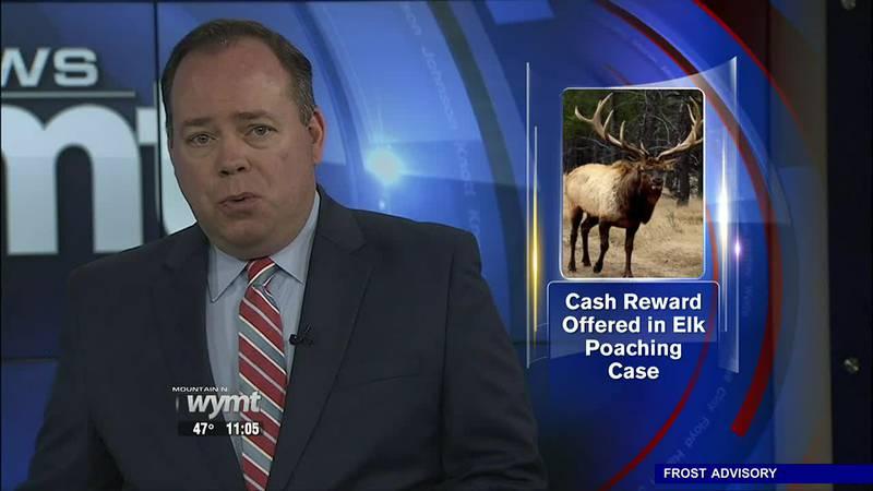 Reward offered for information on elk poaching near Hazard - 11:00 p.m.