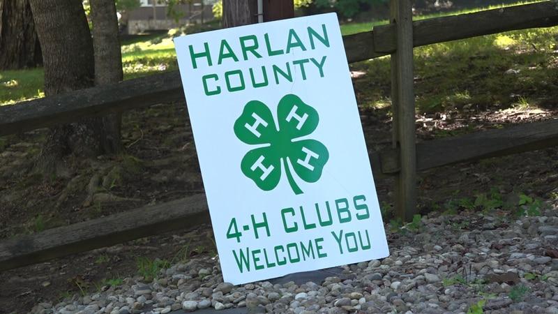 4-H Environmental Camp returns