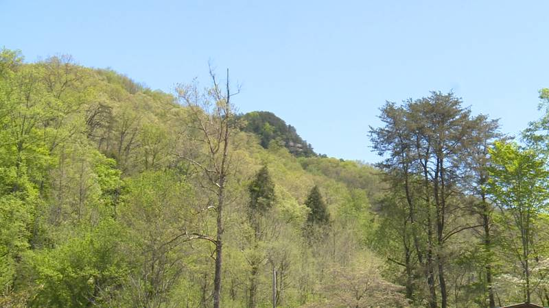 The Red River Gorge shows the beauty of eastern Kentucky and is a great place for families to...