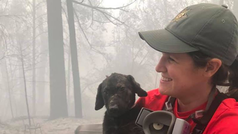 Crews searching an area devastated by wildfire in Northern California found an unexpected...